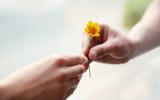 Apprendre à pardonner